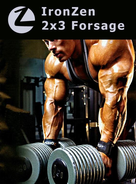 ffcfbc911a5e IronZen - 2x3 Forsage. Программа тренировкок для набора массы + ...