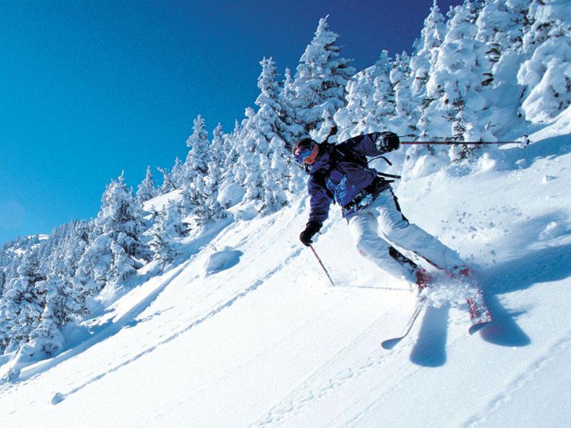 Бодибилдинг и лыжный спорт. Как совместить  » IronZen 582e26c4189