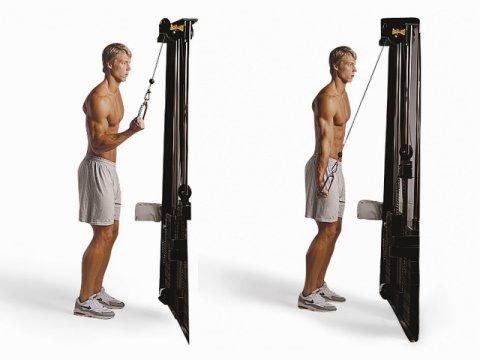 Лучшие упражнения для восстановления потенции